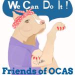Friends of Oconee County Animal Shelter Georgia